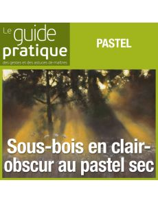 Sous-bois en clair-obscur, pastel sec - Guide Pratique Numérique