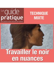 Travailler le noir en nuances et profondeur - Guide Pratique Numérique