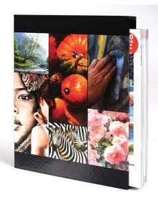 Art of Painting Box Set - Contains 4 issues collection