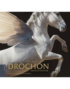 Christophe Drochon artiste peintre - Sélection