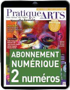Abonnement 2 numéros Numériques du magazine Pratique des Arts