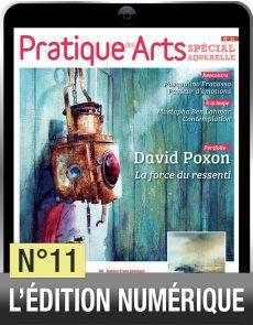 TELECHARGEMENT : Cahier spécial aquarelle 11
