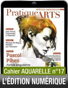 TÉLÉCHARGEMENT - Cahier spécial AQUARELLE 17 - Pratique des Arts