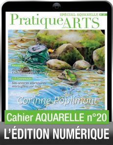 TÉLÉCHARGEMENT - Cahier spécial AQUARELLE 20 - Pratique des Arts