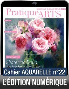 TÉLÉCHARGEMENT - Cahier spécial AQUARELLE 22 - Pratique des Arts