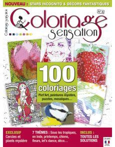 Coloriage Sensation n°6 - 100 coloriages Word Art, peintures mystère, puzzles, points à relier