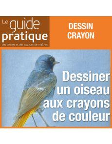 Dessiner un oiseau aux crayons de couleur - Guide Pratique Numérique