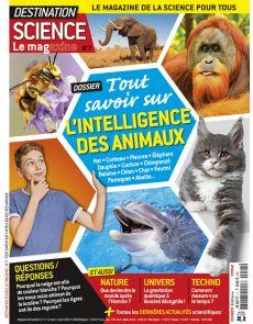 Destination Science Le magazine 7 - Tout savoir sur l'intelligence des animaux
