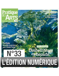 Téléchargement du Cahier spécial Pastel n°33 - Pratique des Arts