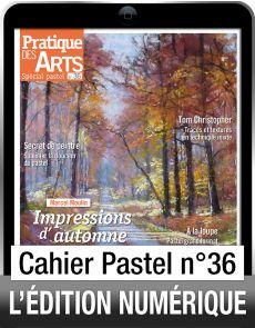 Téléchargement du Cahier spécial Pastel n°36 - Pratique des Arts