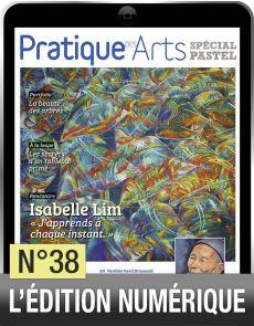 TÉLÉCHARGEMENT - Cahier spécial PASTEL 38 - Pratique des Arts