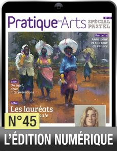 TELECHARGEMENT : Cahier Spécial Pastel n°45 - Pratique des Arts