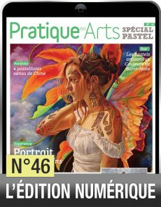 TELECHARGEMENT : Cahier Spécial Pastel n°46 - Pratique des Arts