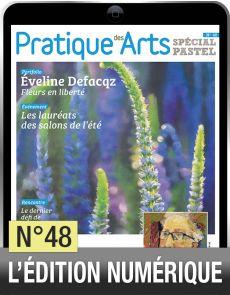 TELECHARGEMENT - Cahier Spécial Pastel 48 - Pratique des Arts