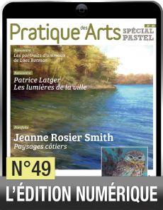 TELECHARGEMENT - Cahier Spécial Pastel 49 - Pratique des Arts