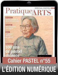 TÉLÉCHARGEMENT - Cahier spécial PASTEL 55 - Pratique des Arts