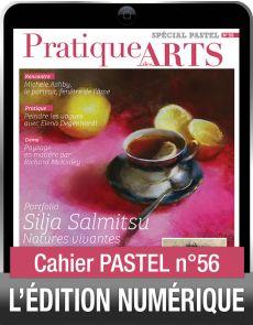 TÉLÉCHARGEMENT - Cahier spécial PASTEL 56 - Pratique des Arts