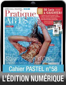 TÉLÉCHARGEMENT - Cahier spécial PASTEL 58 - Pratique des Arts