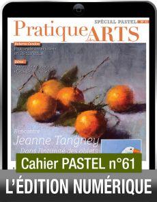 TÉLÉCHARGEMENT - Cahier spécial PASTEL 61 - Pratique des Arts