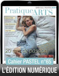 TÉLÉCHARGEMENT - Cahier spécial PASTEL 65 - Pratique des Arts