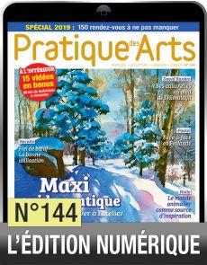 TELECHARGEMENT - Pratique des Arts 144 - Avec un maxi Guide Pratique