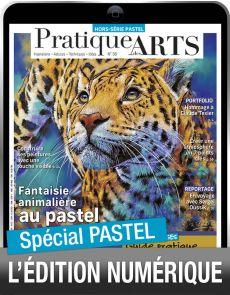 TELECHARGEMENT :  PASTEL Pratique des Arts Hors-série 56