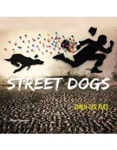 Street dogs - Chien des rues