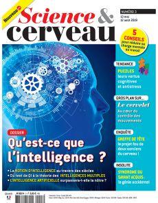 science et cerveau n°3 : qu'est-ce que l'intelligence ?